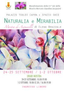 locandina-naturalia-e-mirabilia