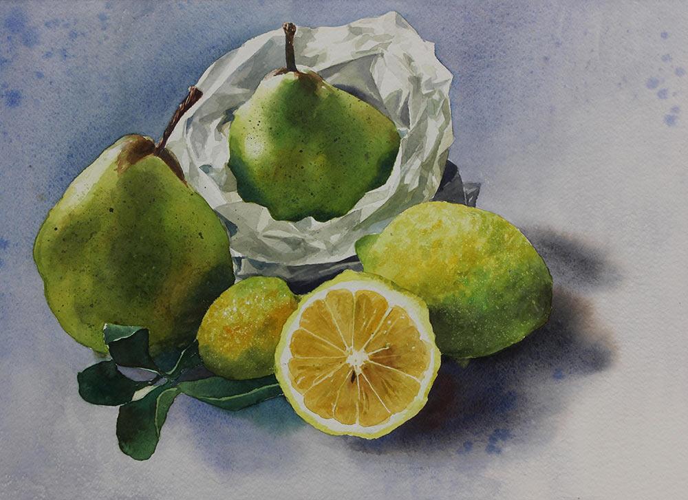 Composizione pere imoni - 35x;55 acquerello su carta