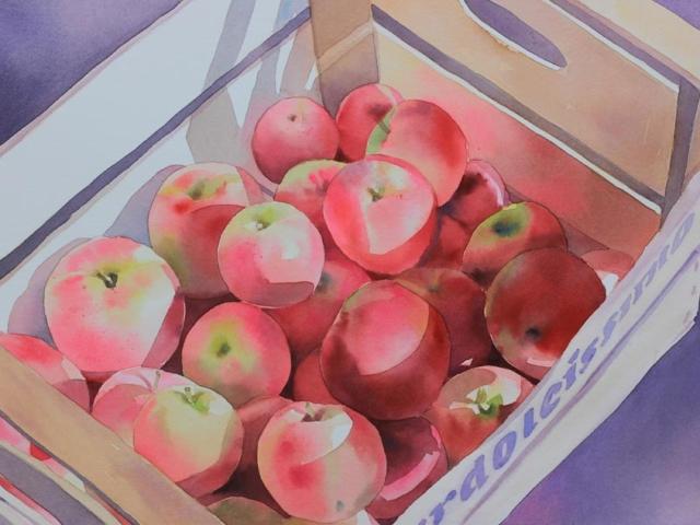 Meledolcissime, 35x54, acquerella su carta, 2016